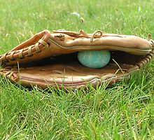 The Catcher's Mitt by James Wheeler