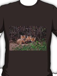 Fox Kits 8 T-Shirt