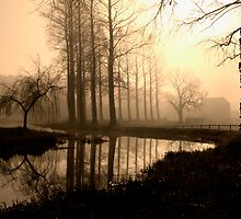 Misty morning by the River Wensum in Norfolk, in Sepia by johnny2sheds