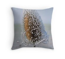 Frosted Teazle Head close up - Bintree Norfolk Throw Pillow
