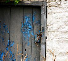 Cellar Door by Gerard  Horan