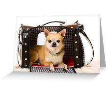 Chihuahua and pet carry case Greeting Card