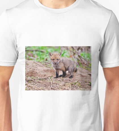 Fox Kit on Den - Ottawa, Ontario T-Shirt