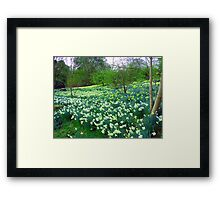 I wandered lonely as a cloud ... Framed Print
