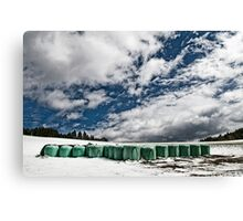 Snow is coming back Canvas Print