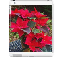 Poinsettias for Christmas iPad Case/Skin