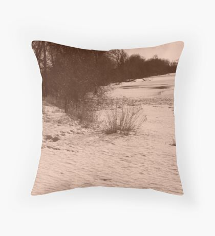 Winter Beach V Throw Pillow