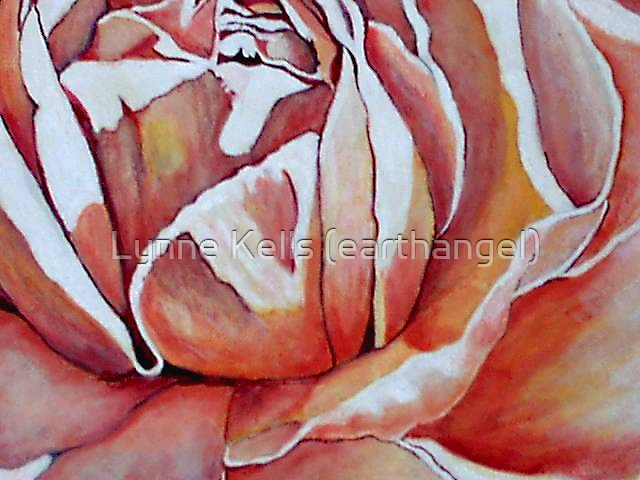 'pruned' Rose by Lynne Kells (earthangel)
