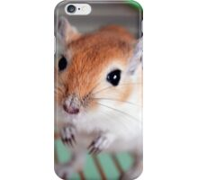 Gerbil 9 iPhone Case/Skin