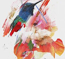 Colibri by pulssart