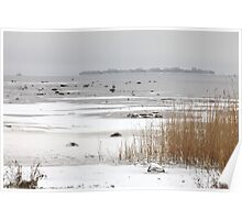 ice covered lake Poster