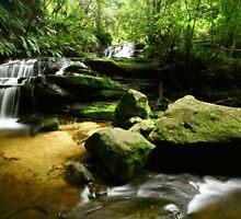Leura Cascades by Jennifer and Paul Cave