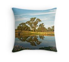Afternoon Reflections Throw Pillow