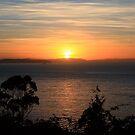A New Day Dawns by Mishka Góra