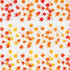 Autumn Leaves by julia