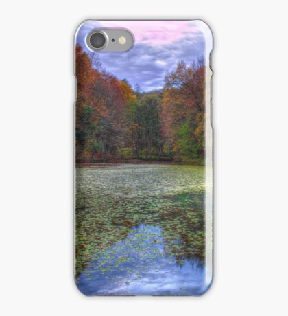 Forest lake in autumn iPhone Case/Skin