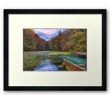 Forest lake in autumn Framed Print
