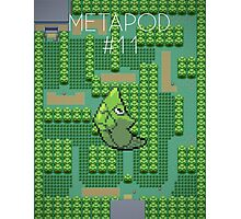 Pokémon - #11 Metapod (Pokédex) Photographic Print