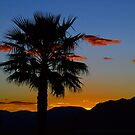 Nevada Sunset by DflyBri