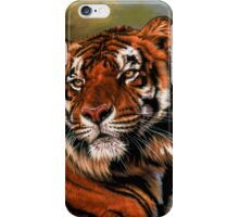Power and Grace iPhone Case/Skin