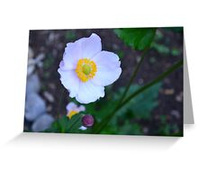 Rainy Day Flowers Greeting Card