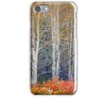 aspens and autumn rose and briar iPhone Case/Skin