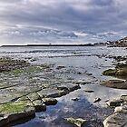 Church Beach 5 ~ Lyme Regis by Susie Peek