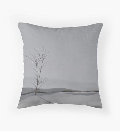 NC Winter scene #2 Throw Pillow