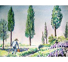 Tuscan Gardener Photographic Print