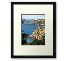 The Wild Coast Framed Print