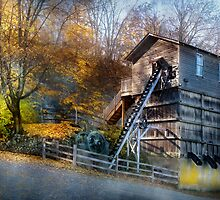 The Old Mill by Mike  Savad