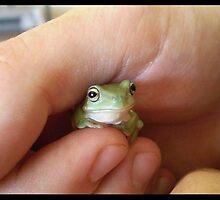 Froggie -2- by elizabethrose05