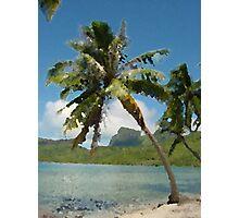 Lone Palm Photographic Print