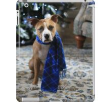 Holiday Warmth iPad Case/Skin
