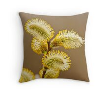 Spring Time Pussy Willow Throw Pillow