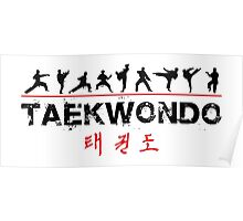 Taekwondo Text and Fighters Poster