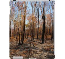Blackened trees and bushland after bushfire iPad Case/Skin