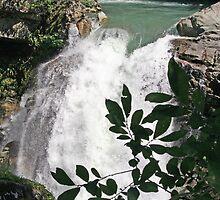 Nooksack Falls by Lynn Bawden