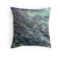Submersed Rocks Under Shallow Water Throw Pillow