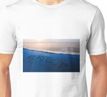 Oregon Perfect Unisex T-Shirt