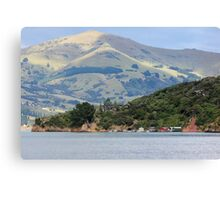 Robinson's Bay Canvas Print