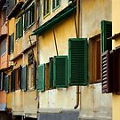 Windows, Ponte Vecchio by Tiffany Dryburgh