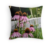 Echinacea - Purple Cone Flower Throw Pillow