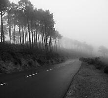 Destination Unknown by Kieran  Connellan