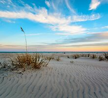 Peace In Pawleys by Tami Kull
