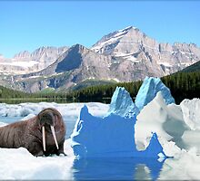 791-Still Icy by George W Banks