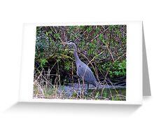 My Graceful Friend the Heron Greeting Card
