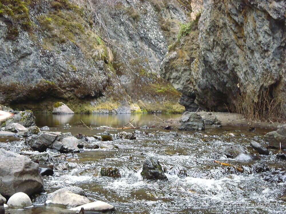 Bear Creek Box Canyon by Gregory Ewanowich