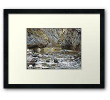 Bear Creek Box Canyon Framed Print