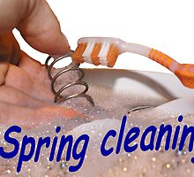 Spring Cleaning by MooseMan